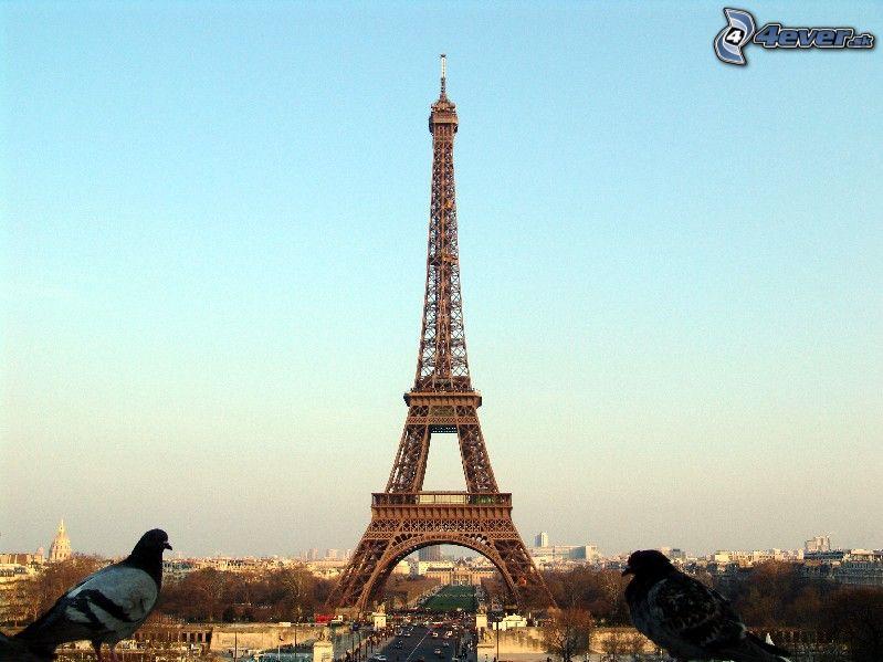 dovolenka Francúzsko